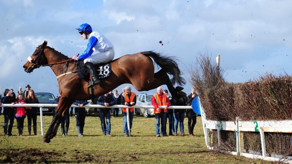 Point to point race
